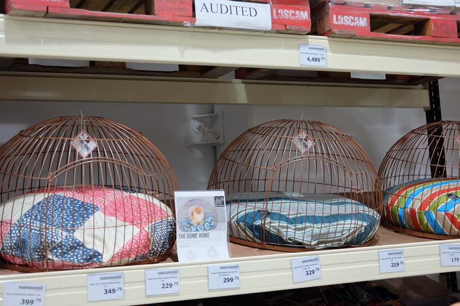 super cute dog cage/bed